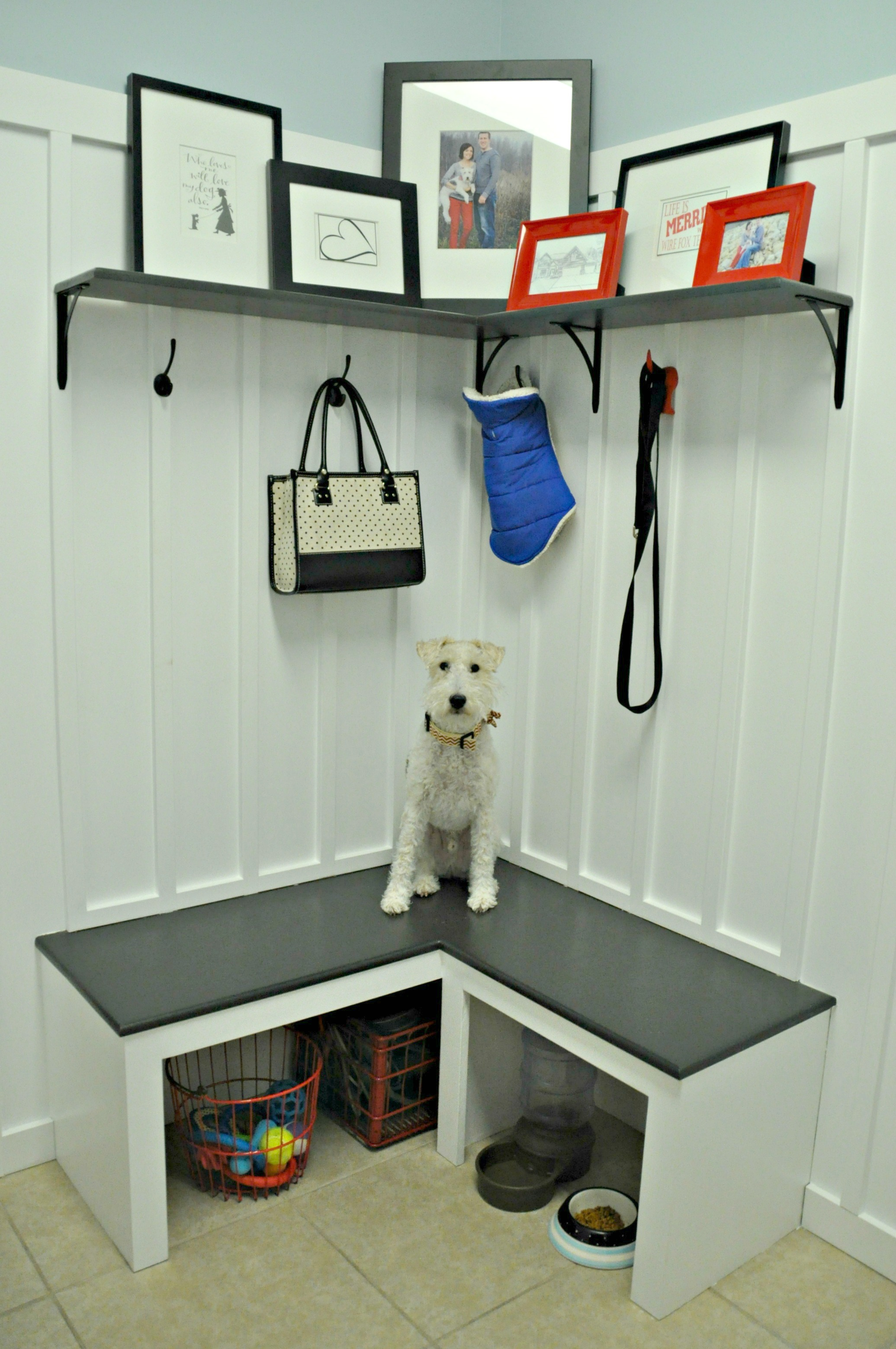 Decor and the Dog Mudroom with Ike.jpg