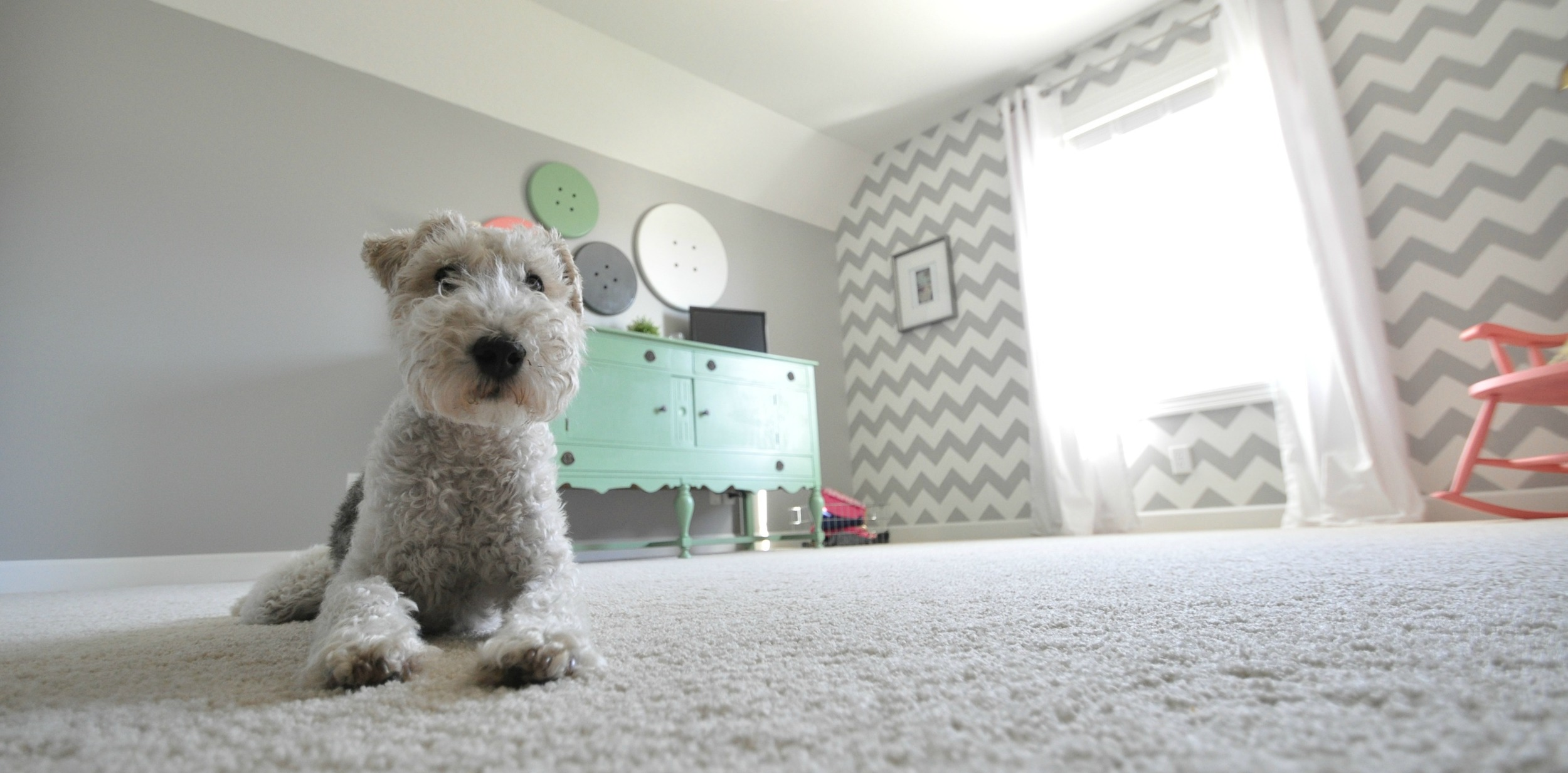 Decor and the Dog Craft Room tour {chevron stenciled wall}.jpg