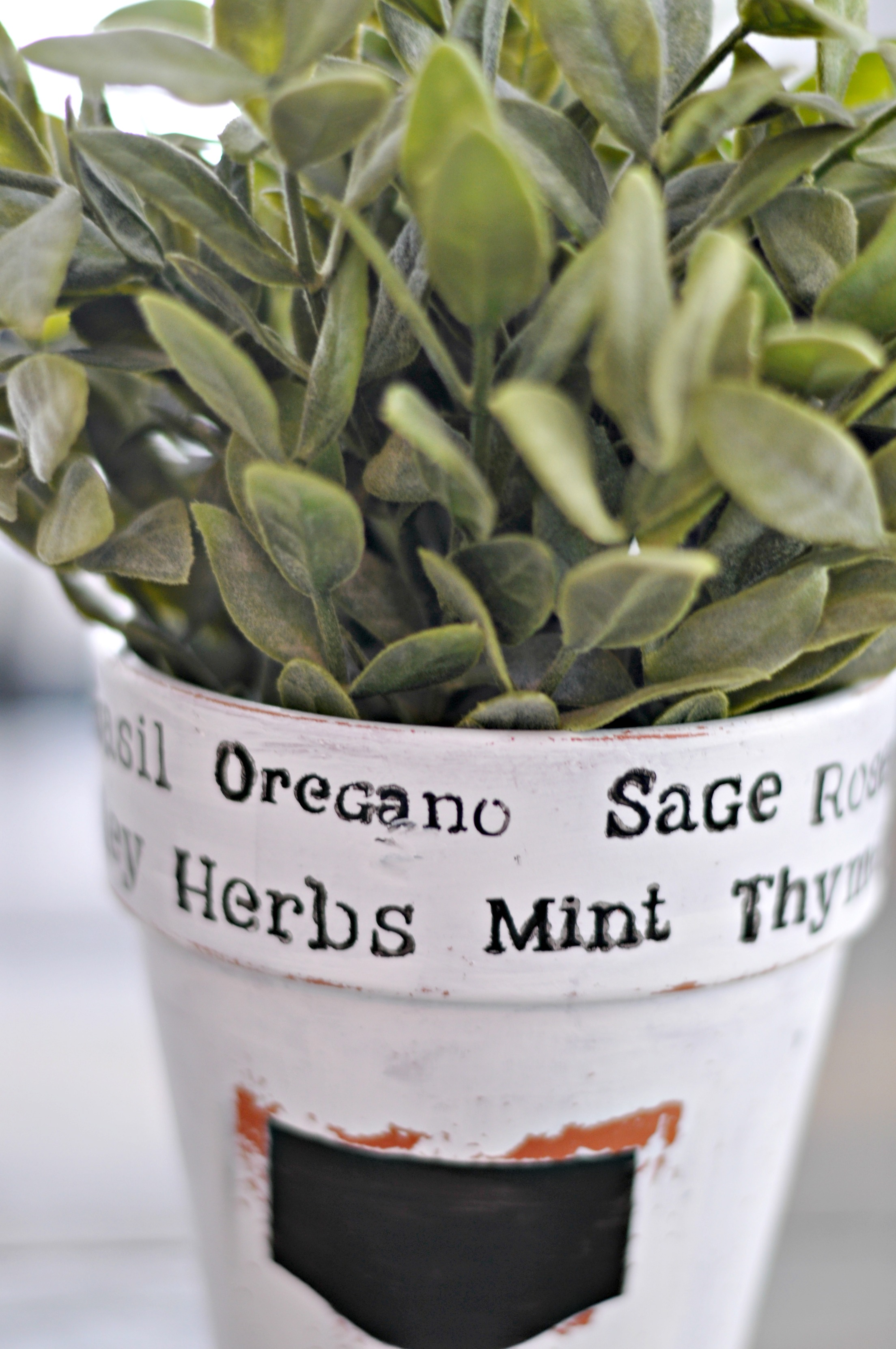 Stenciled Terra Cot Herb Pot | Decor and the Dog