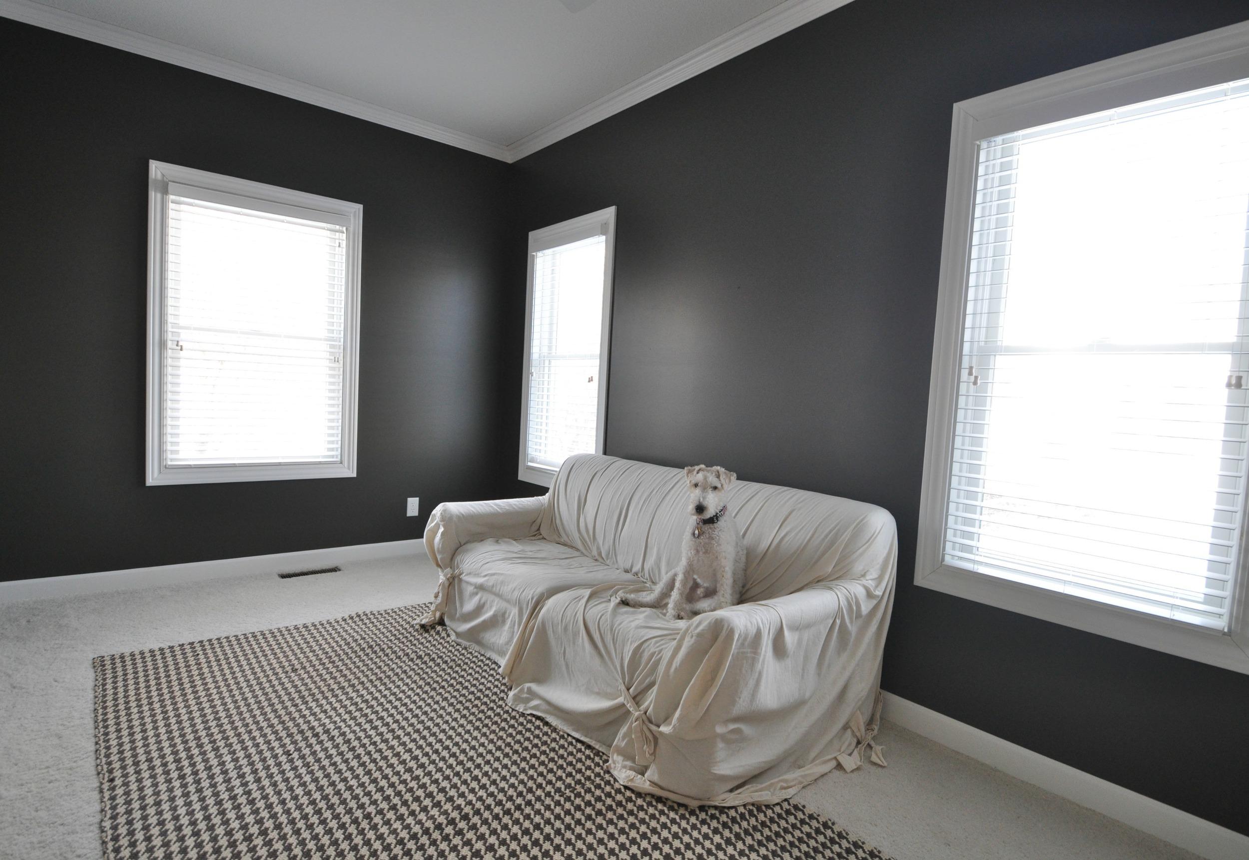 Sherwin Williams Thunder Gray   Decor and the Dog