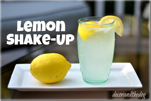 Lemon Shake-Up recipe