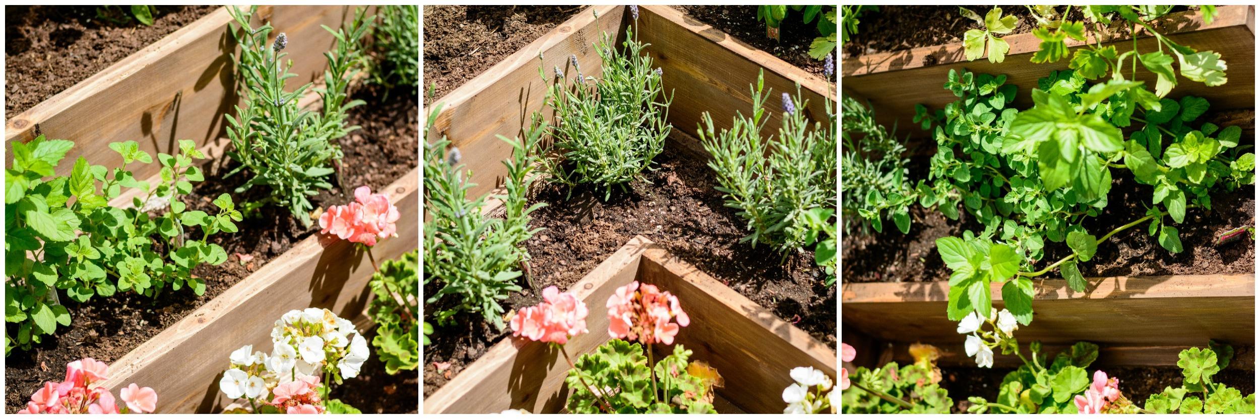 DIY Tiered Herb Garden