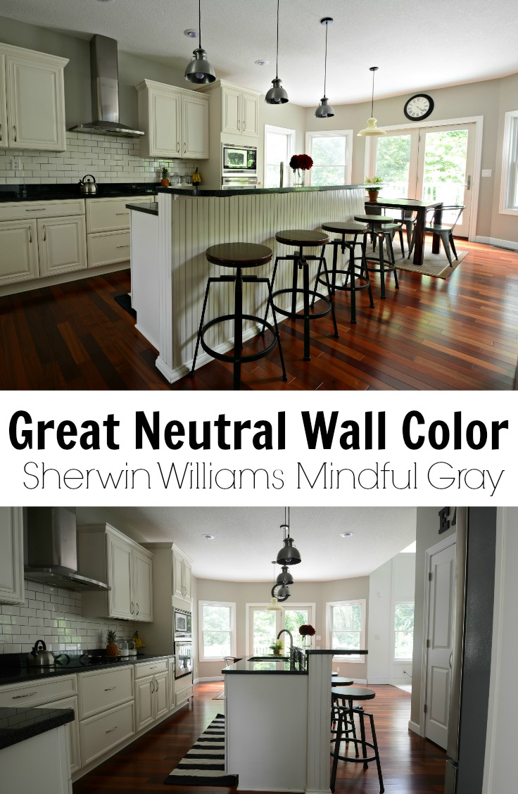 Sherwin Williams Mindful Gray.  Great Neutral Paint Color.