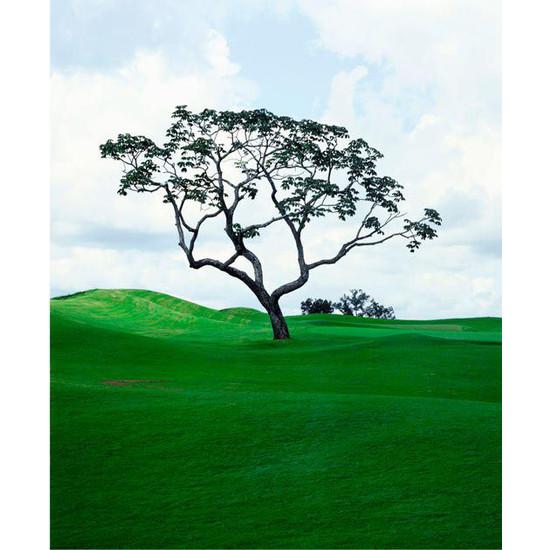 Espasso Golf.jpg
