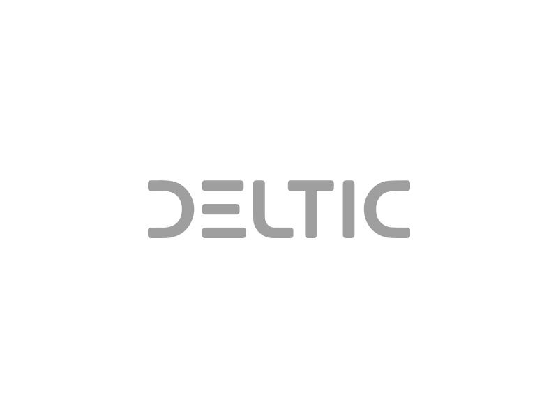 Deltic Auto Corp