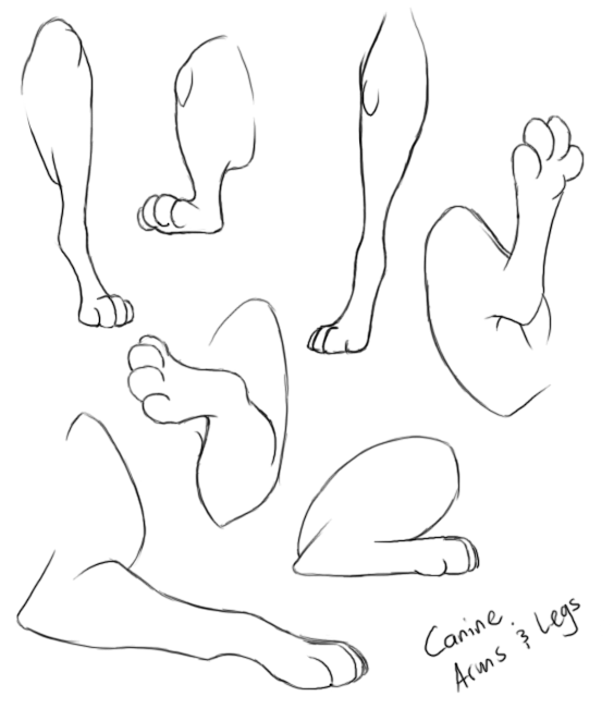 arms-and-legs.png
