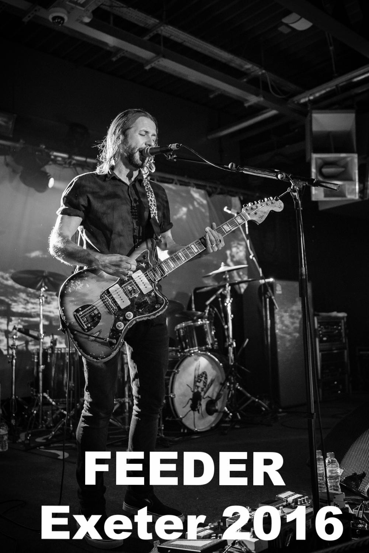 20161020-Feeder-17033-20.jpg