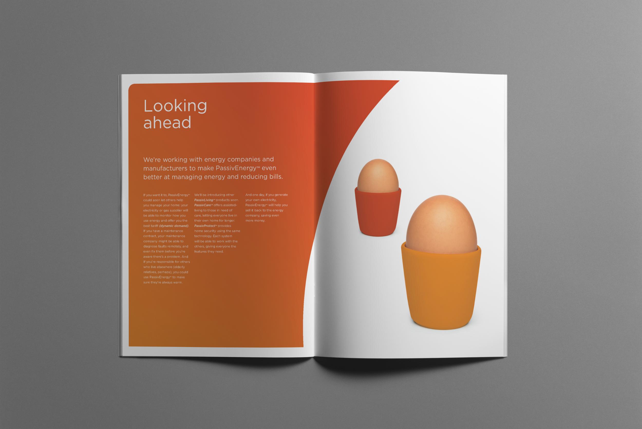 04-brochure-a4-vert egg2.png