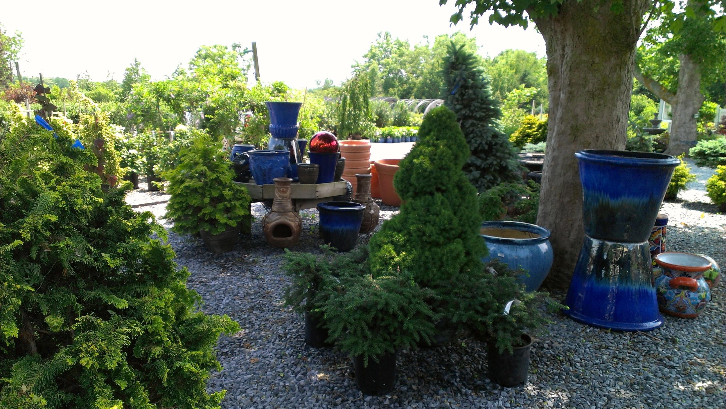 Garden Center 5.jpg