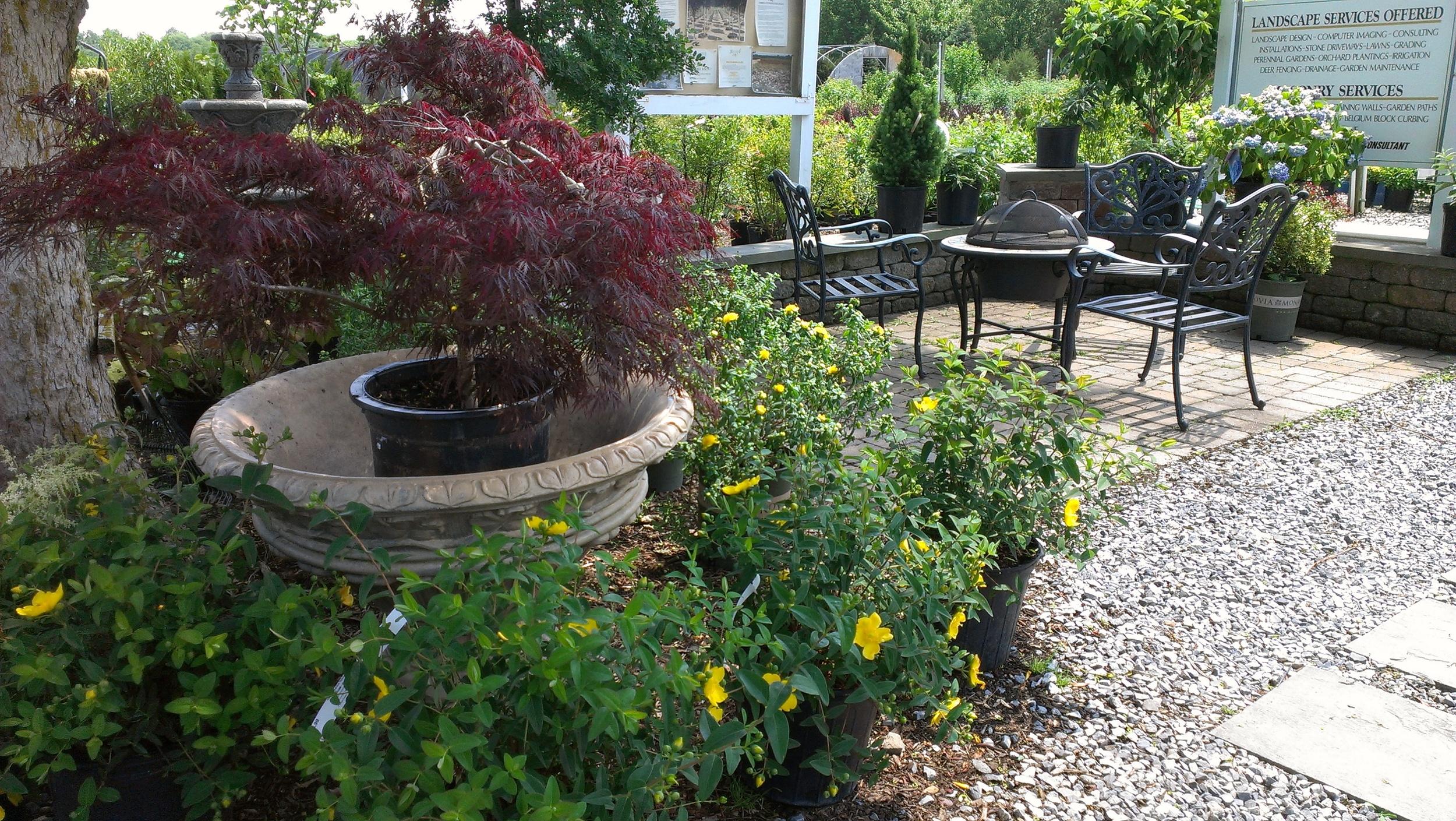Garden Center 8.jpg