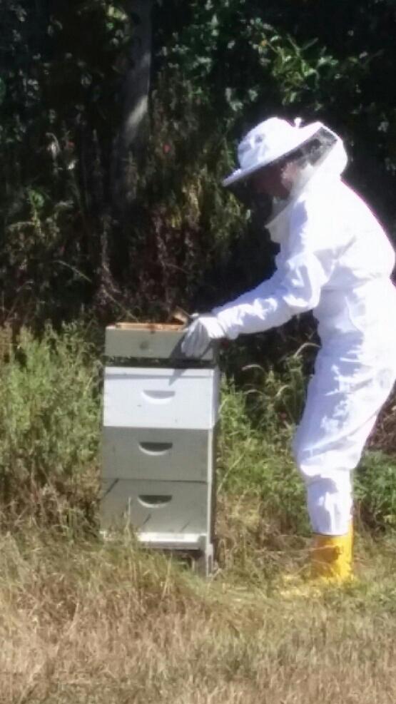 lisa_beekeeper3.jpg