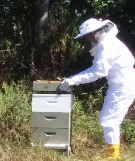 lisa_beekeeper11.jpg