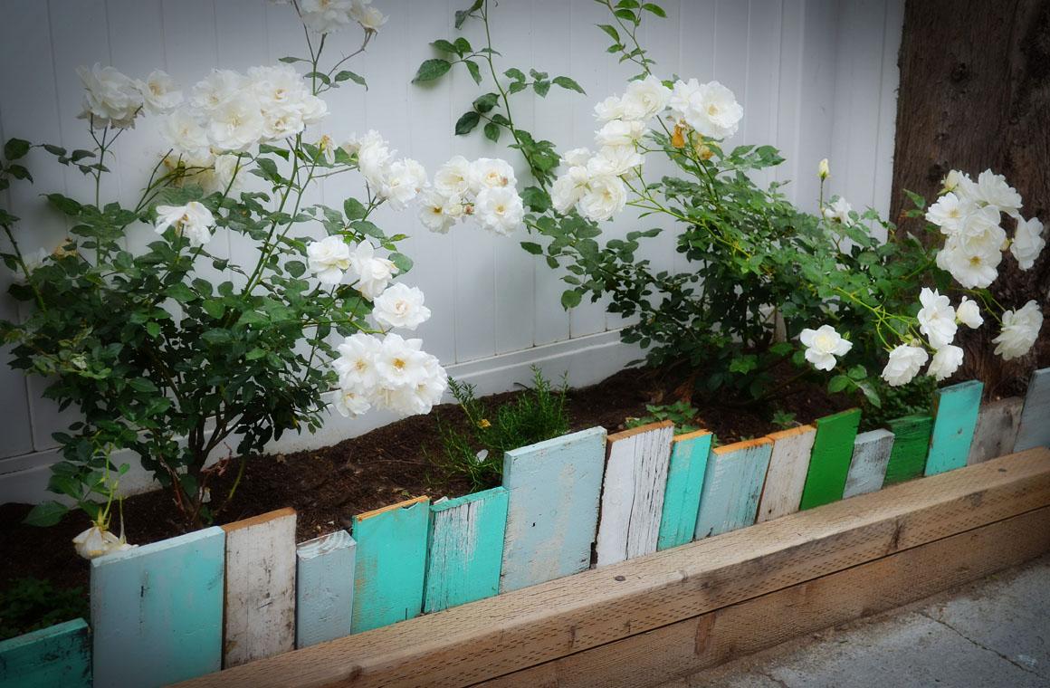 garden-edging-scrap-wood.jpg