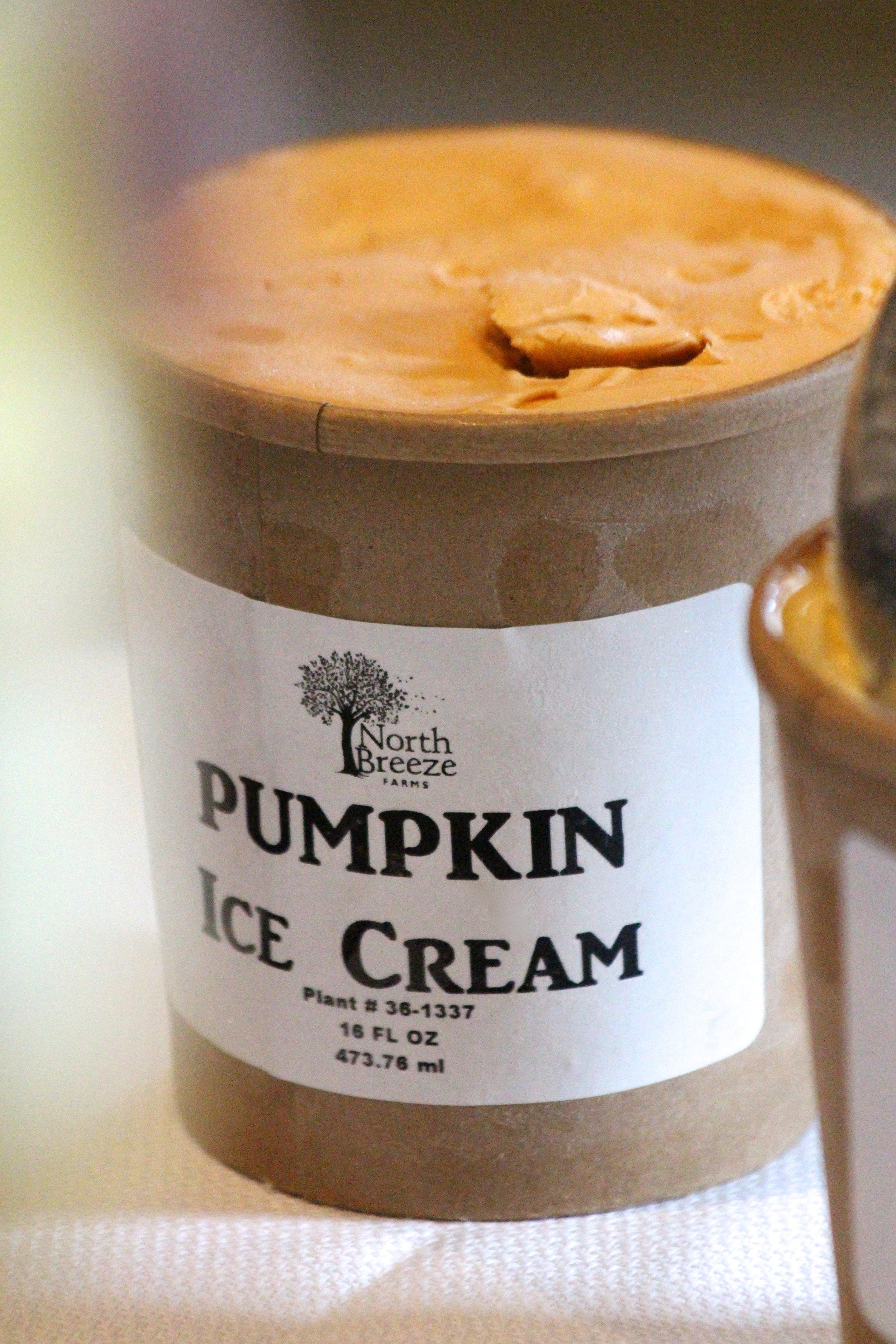 Pumpkin Ice Cream $5.99