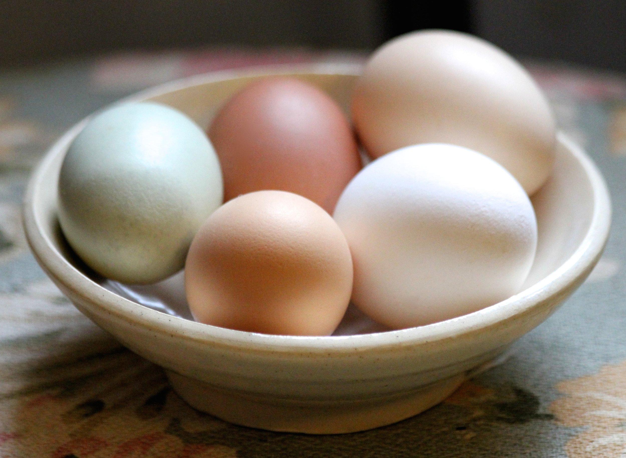 Farm Fresh Eggs $6 Dozen