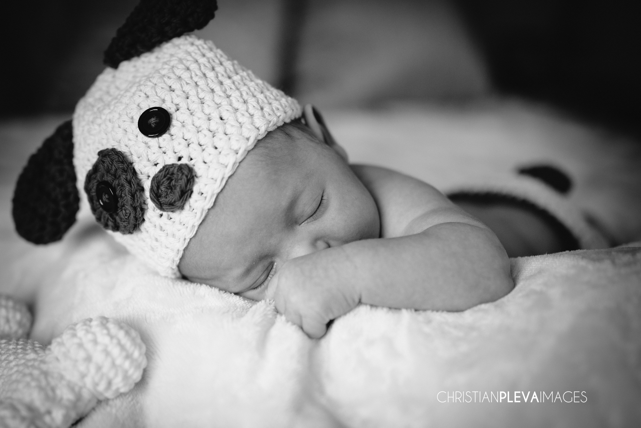 boston newborn  photographer-2.jpg