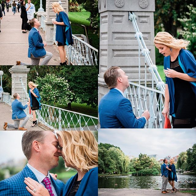 Amazing #proposal in the #publicgardens #boston #wedding #bostonweddingphotographer #photographer #photographerboston #engagementring #engagement #bostonphotographer #shesaidyes #heasked