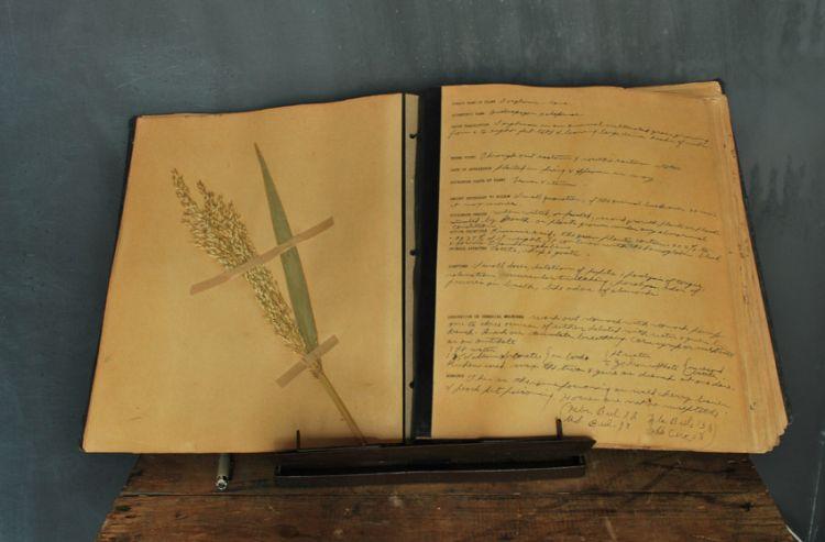 plantbook5.jpg