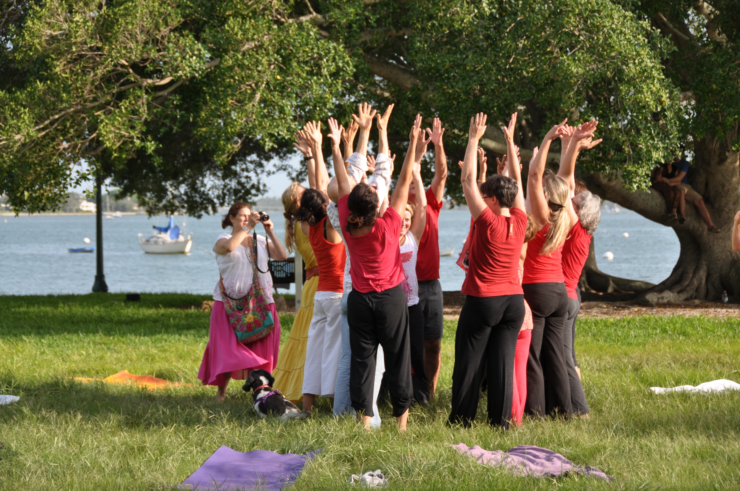 Dancing River of Gratitude videoing done outside in Sarasota Florida at Bayfront Park