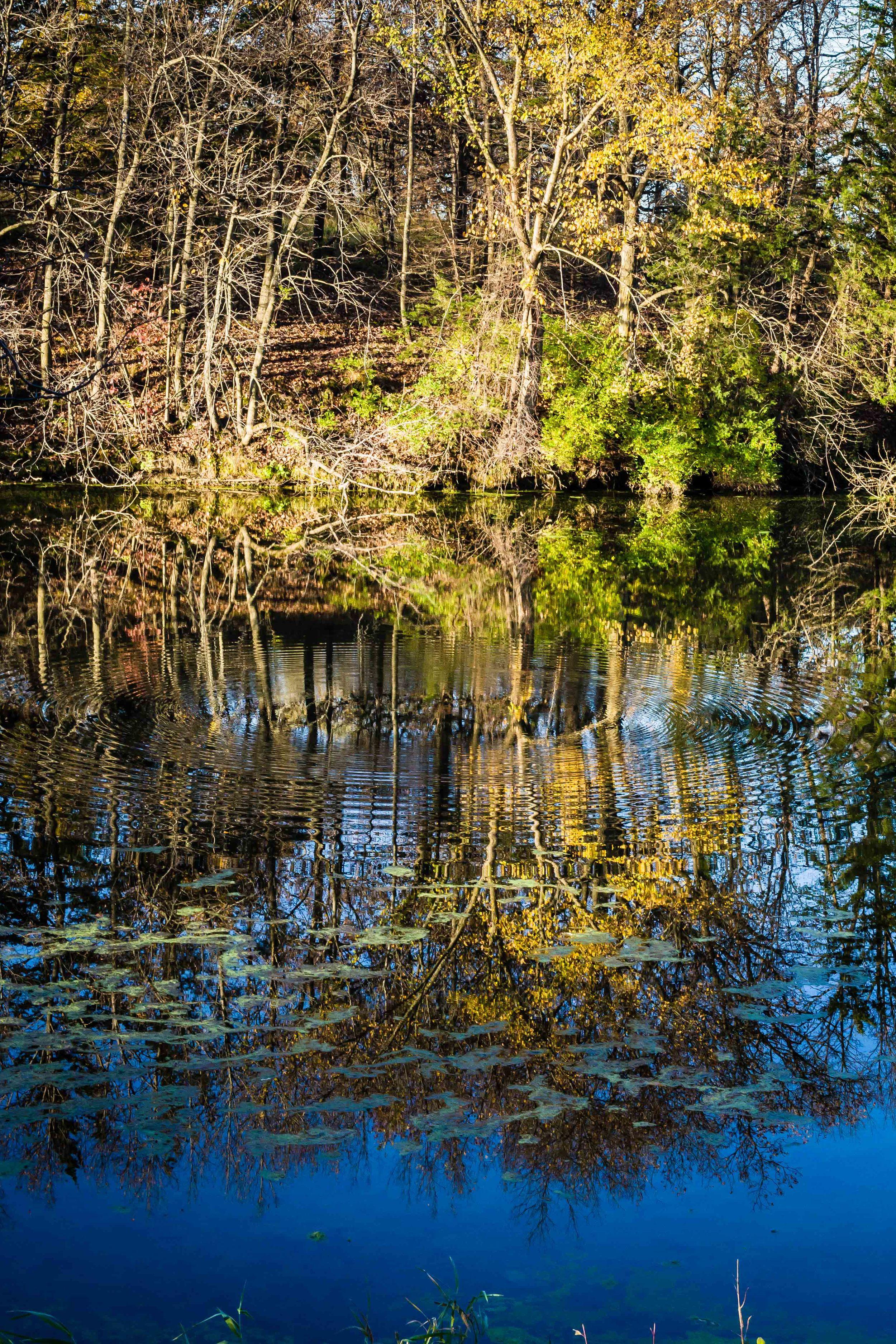 Reflections, McFarland Park, Story County, Iowa