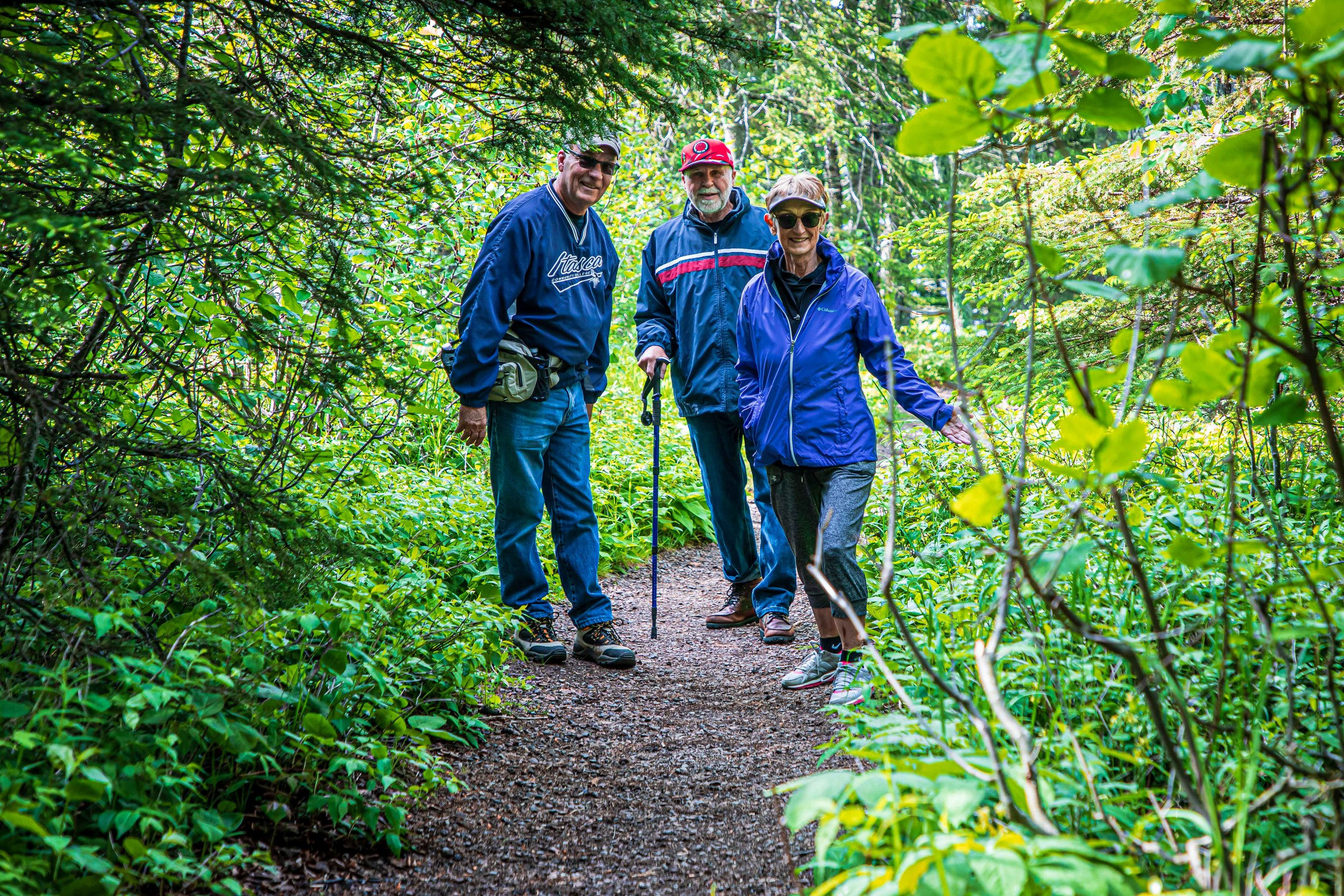 Minnesota North Shore Forest: Not Lost