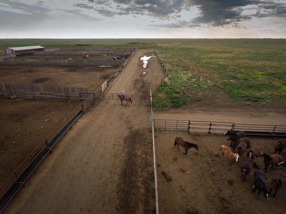 Stampede Ranch near Hanna