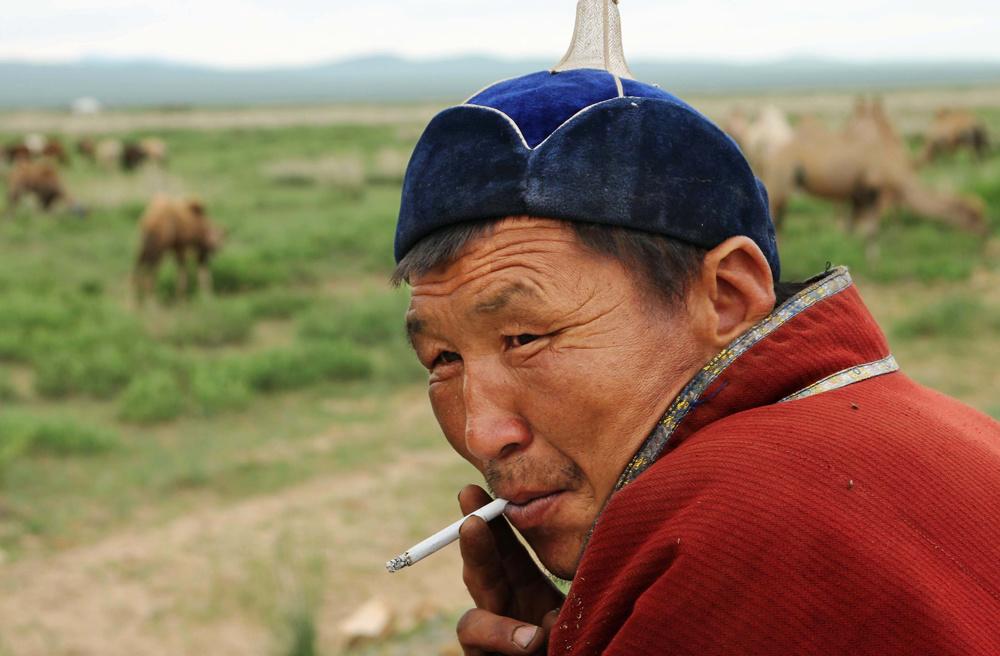 Toroo, a camel herder, pauses for a break along the highway west of Ulaanbataar, Mongolia