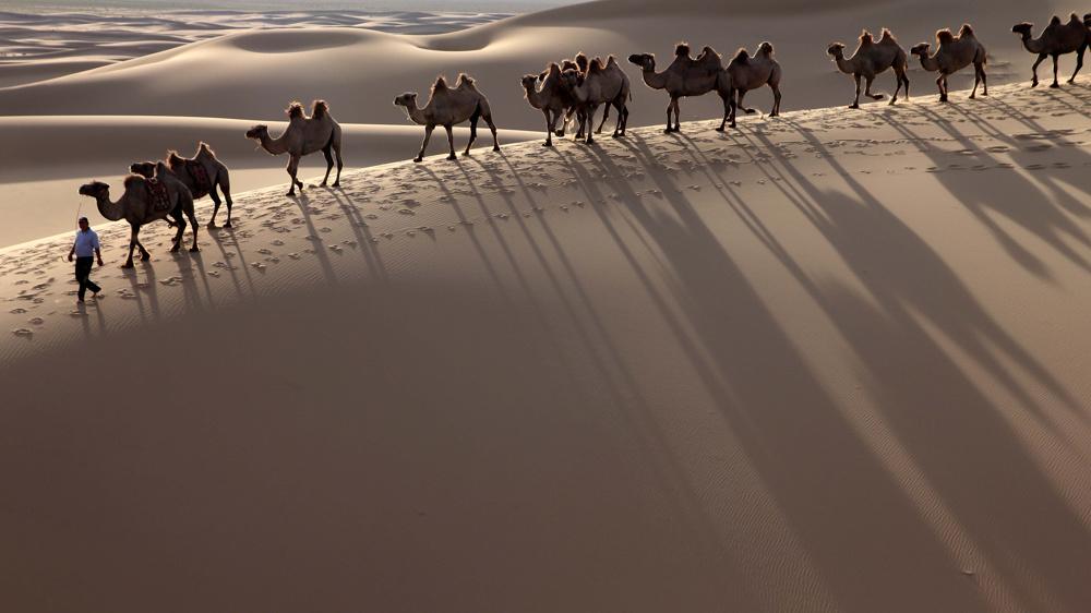 In the singing dunes, Gobi Desert, Mongolia