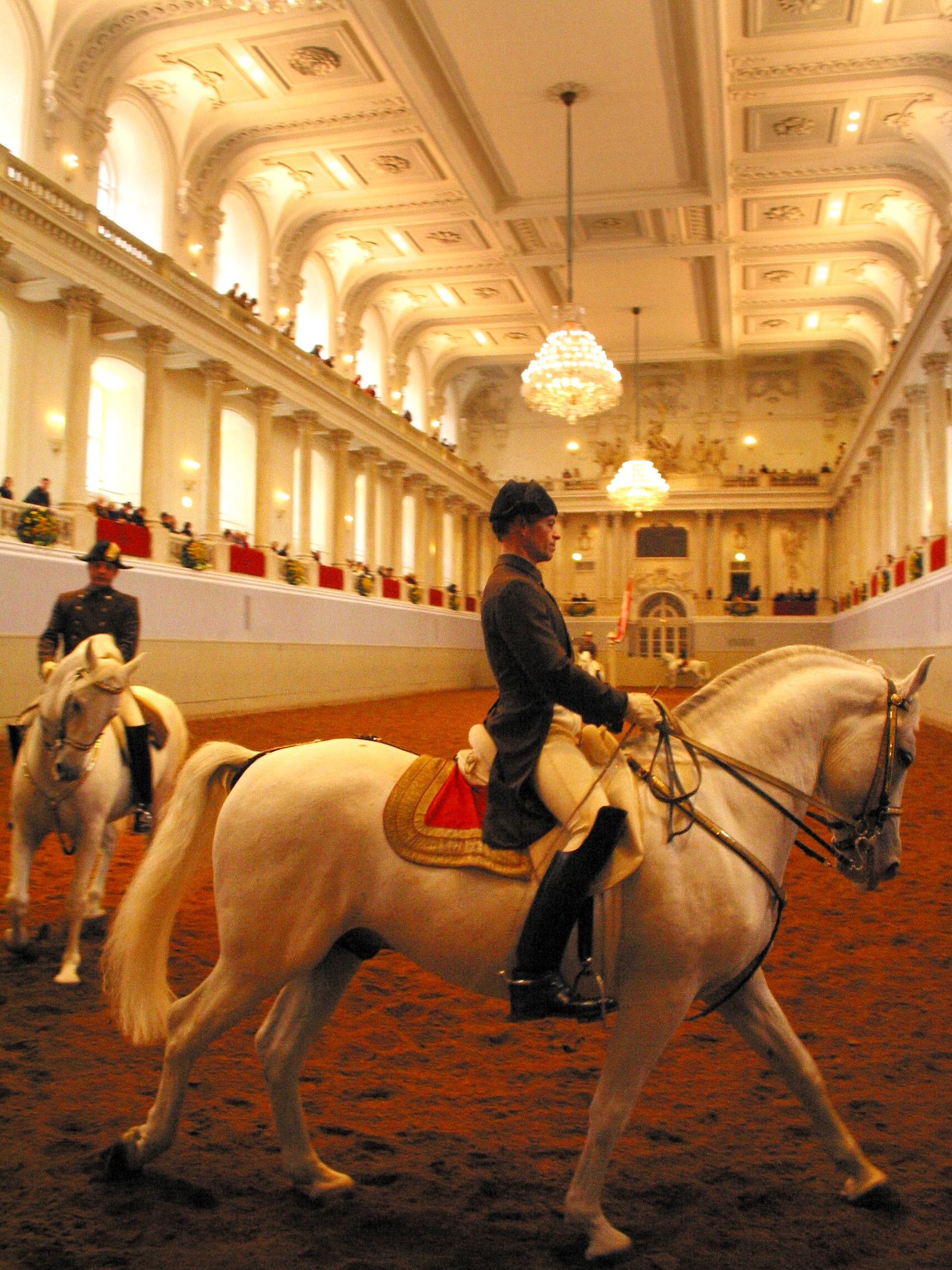 Royal Spanish Riding Academy, Vienna