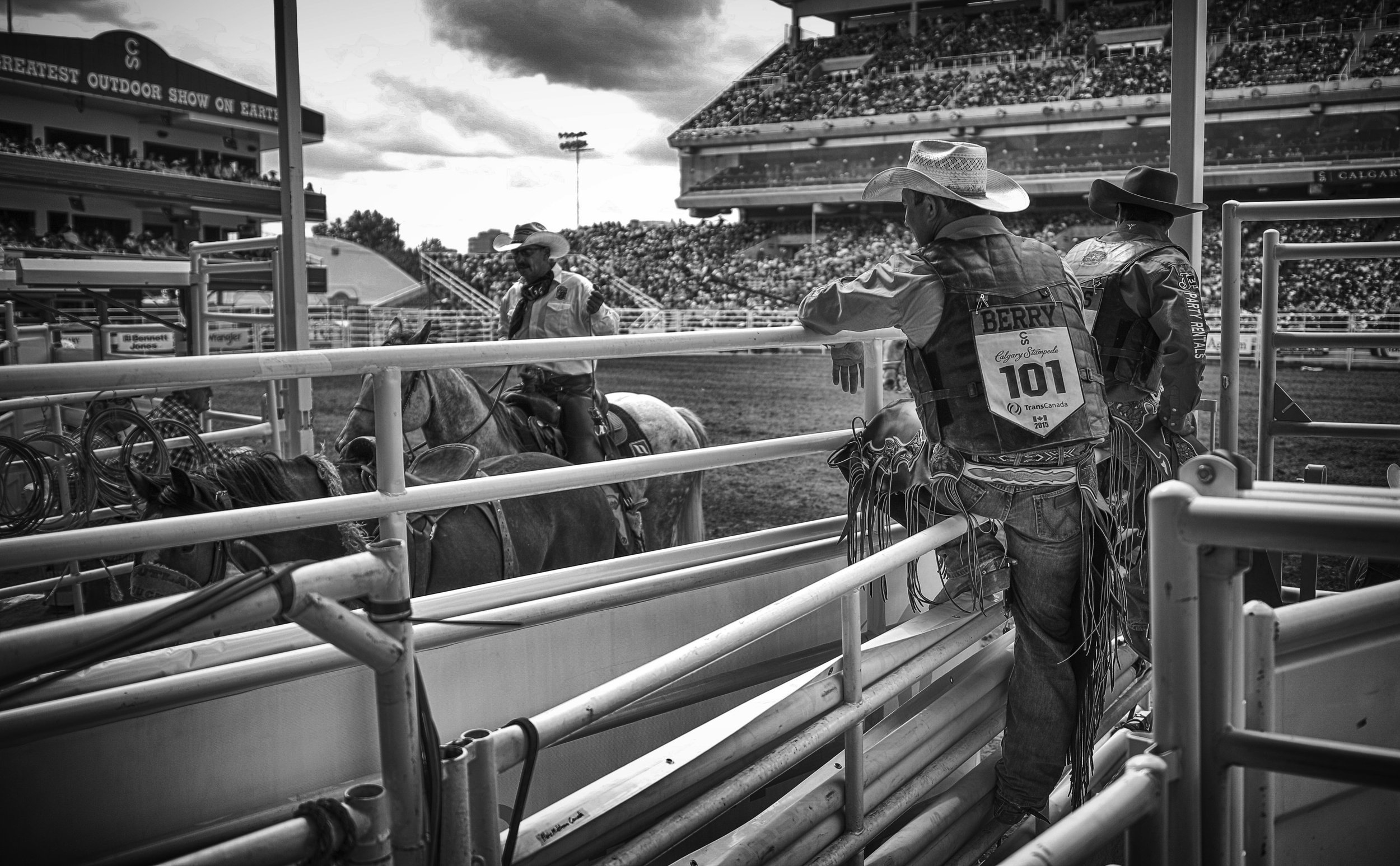 Saddle Bronc riders