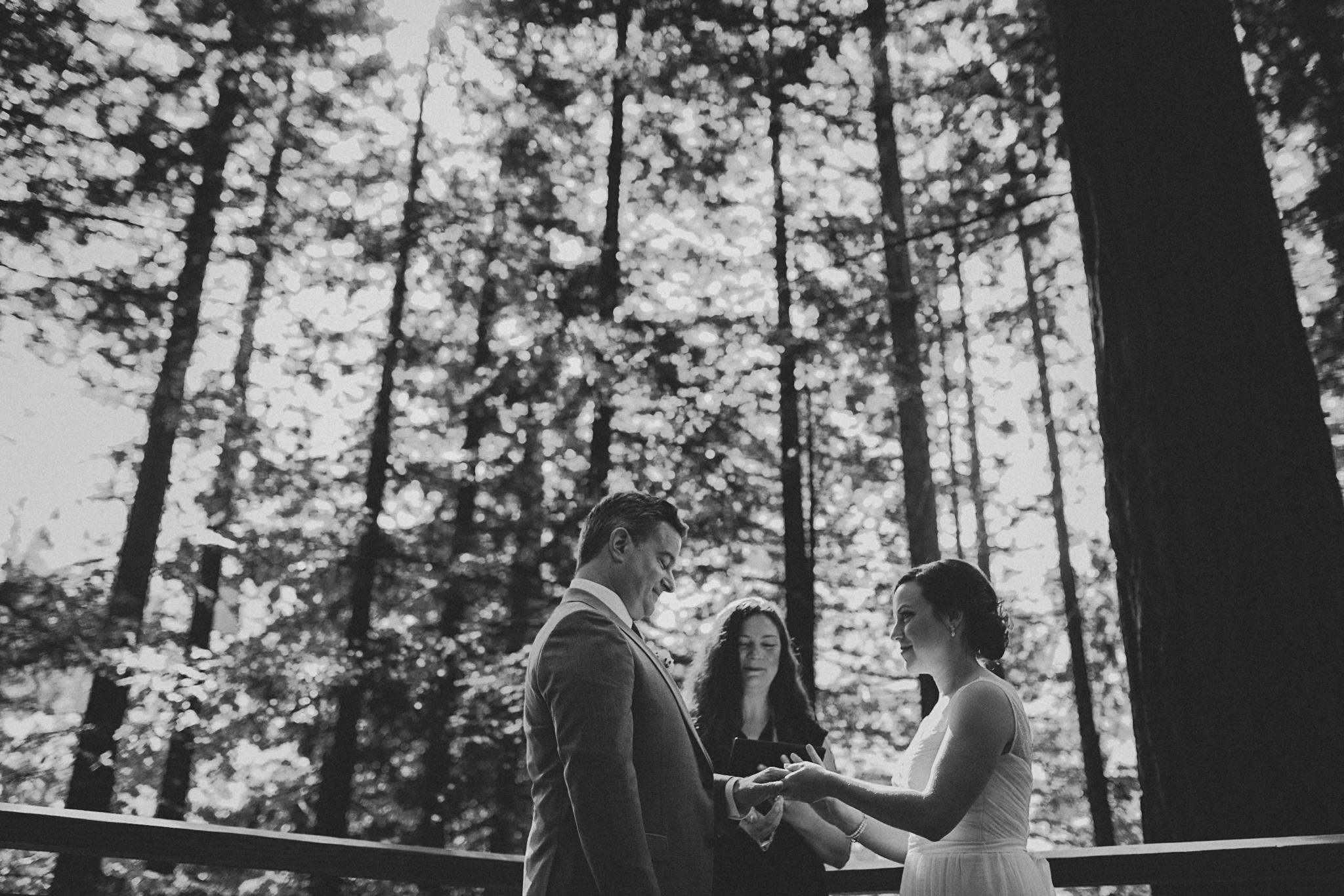 portland-redwoods-elopement-photographs--4.jpg