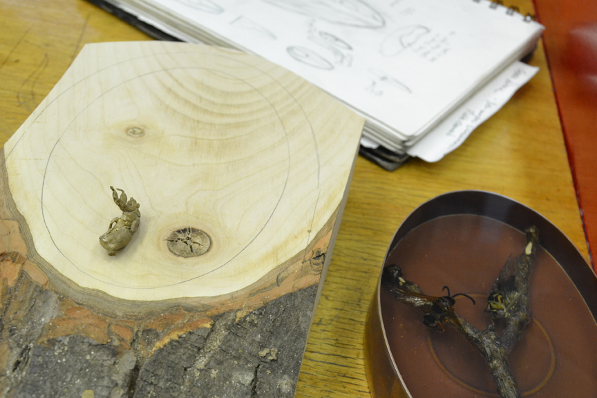 From conceiving the idea on paper to creating the real thing, this piece  includes such materials as  resin, wood, cicadas, cast bronze and various metals  .