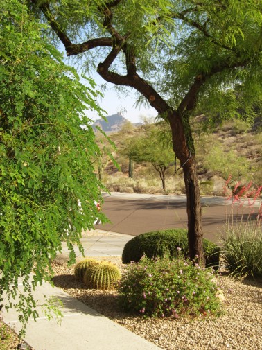 Arizona-Fountain-HillsIMG_0326e.jpg