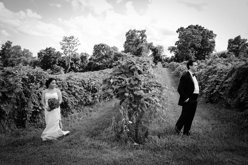 Bluemont VIneyard Bride and Groom in VIneyard