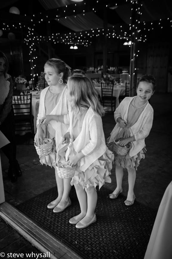 Flower Girls Bluemont Vineyard