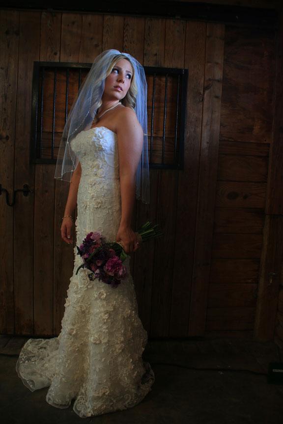Bluemont Vineyard Bridal Portrait