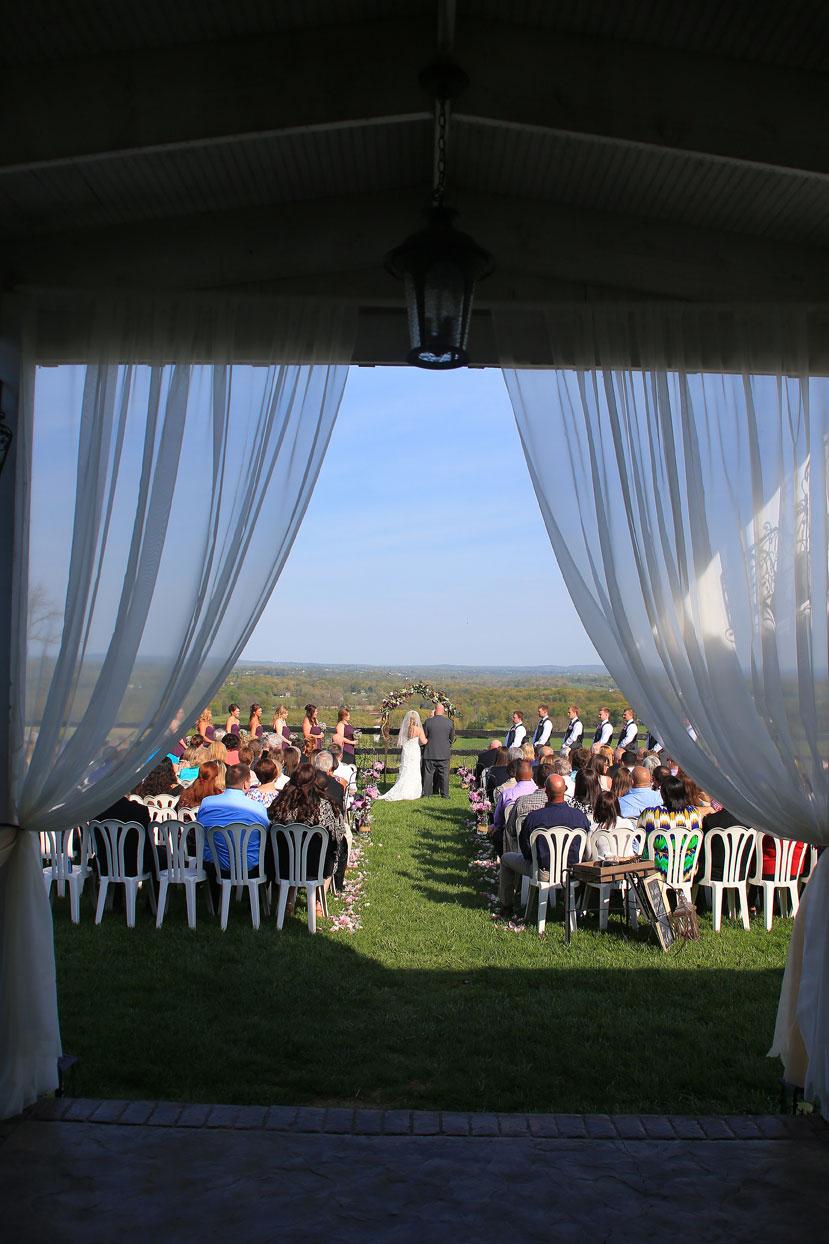Bluemont Vineyard Wedding Ceremony Photo
