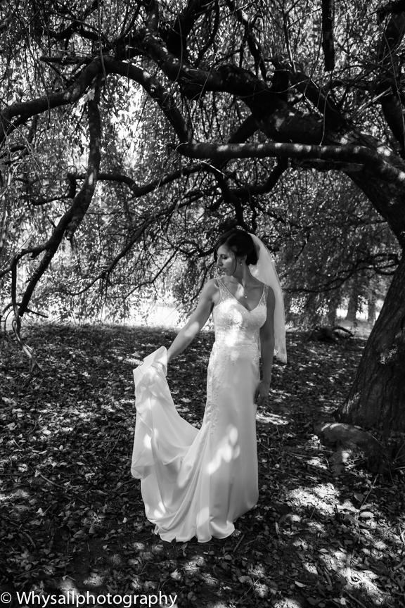 Briar Patch Bride