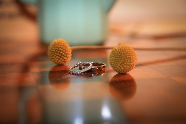 mount vernon farm wedding rings