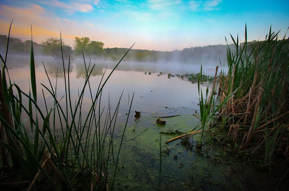 Editorial Photo for Audubon Mgazine