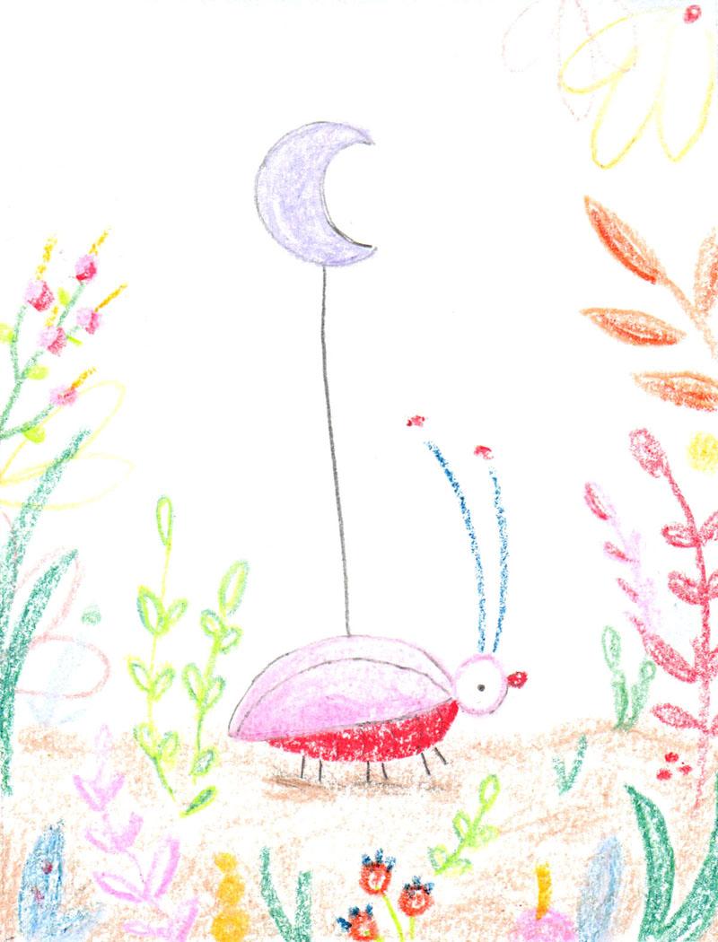 Moon Beetle
