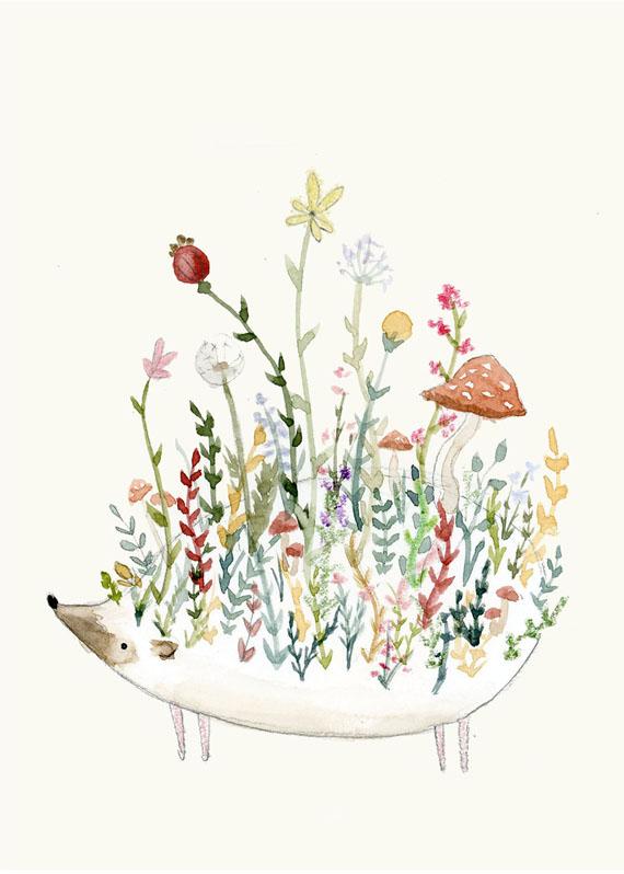 Floral Hedgie