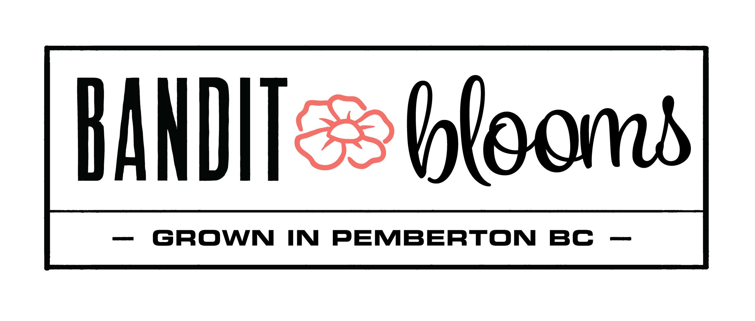 Bandit blooms logo_banner.jpg