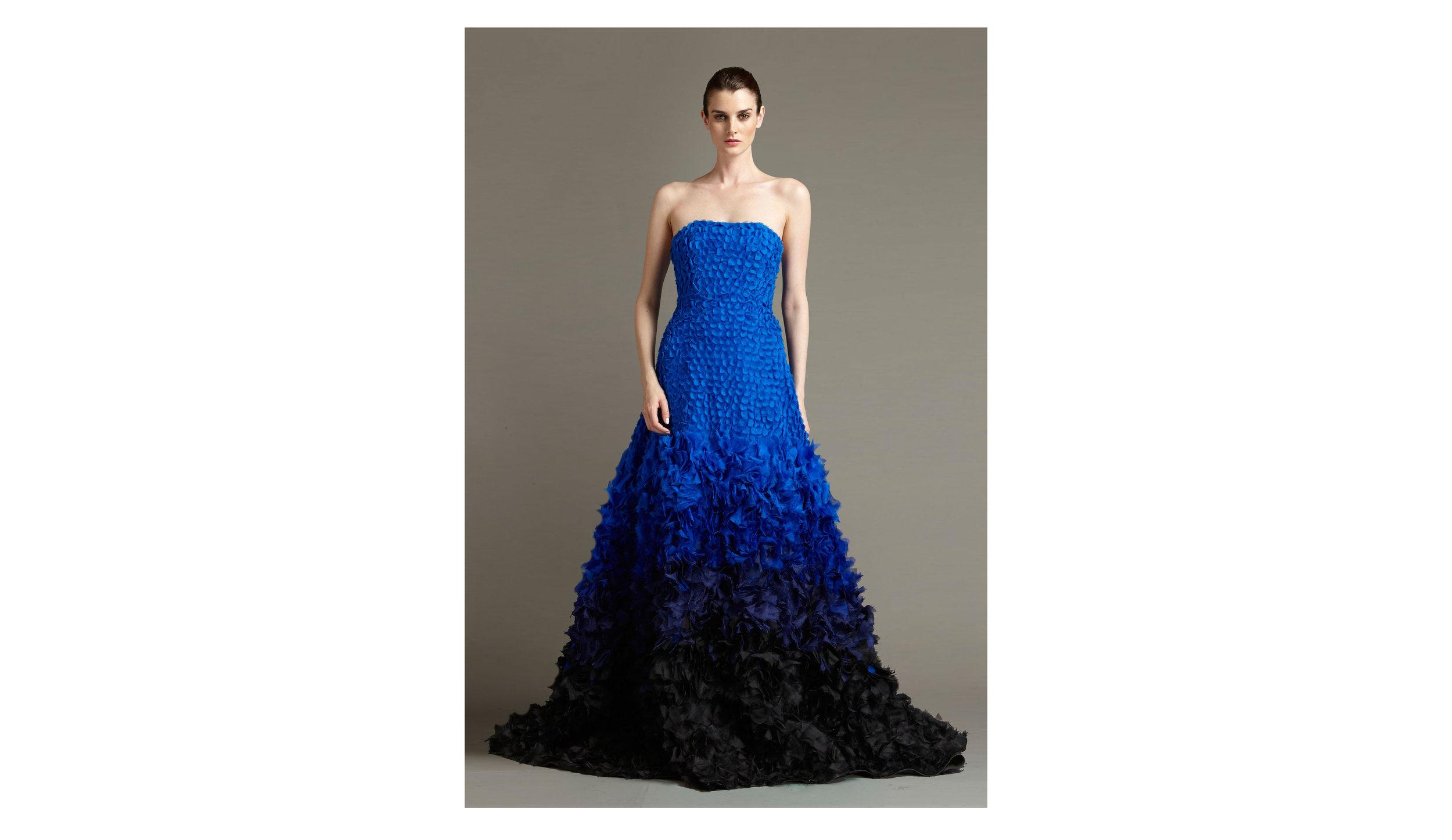 blue gown.jpg