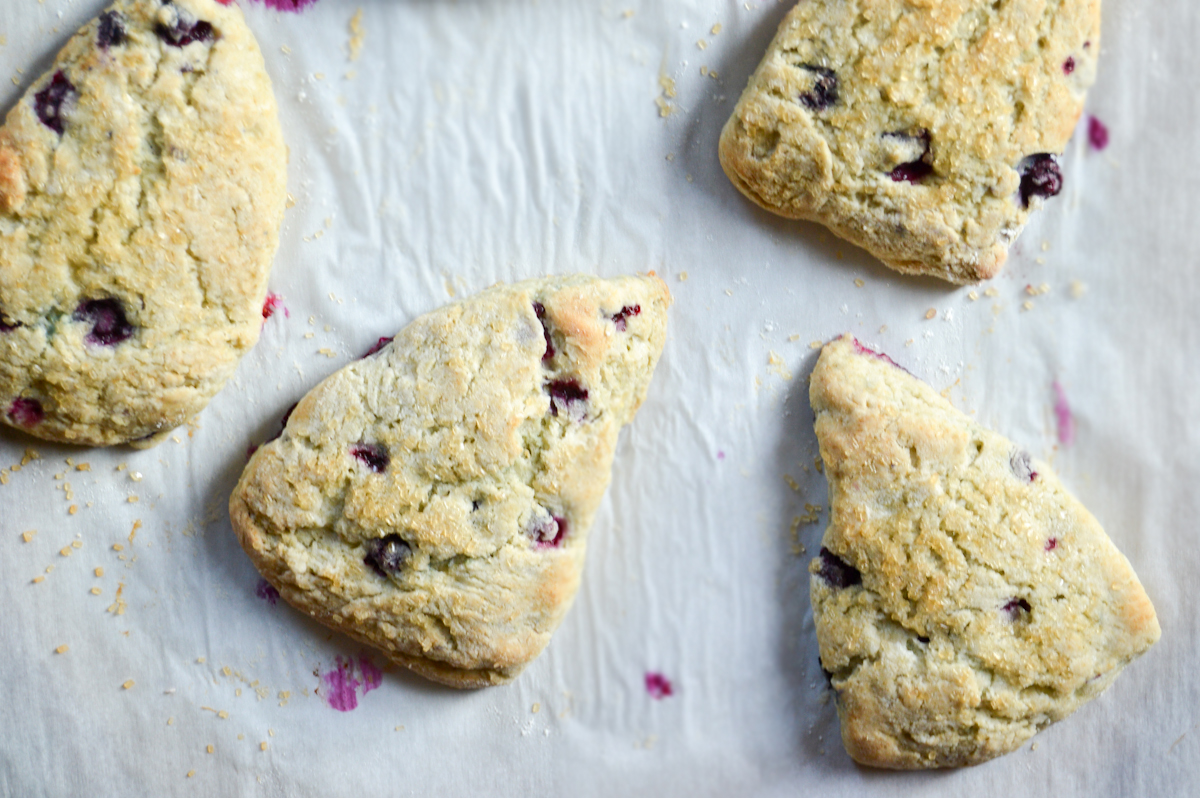 Blueberry Scones via. Birdie Shoots
