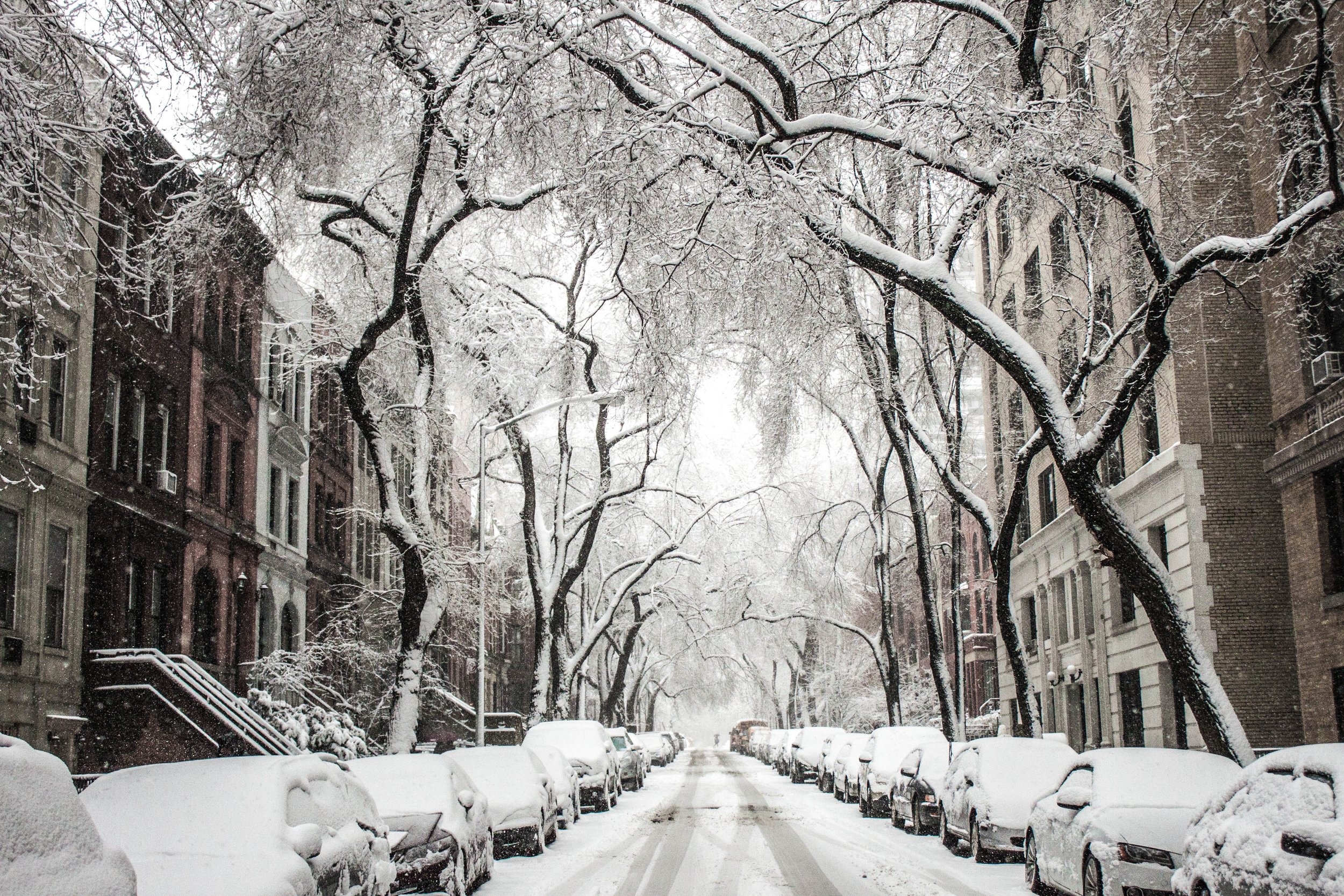 Why the Weather had other plans for NYFW via. www.birdieshoots.com