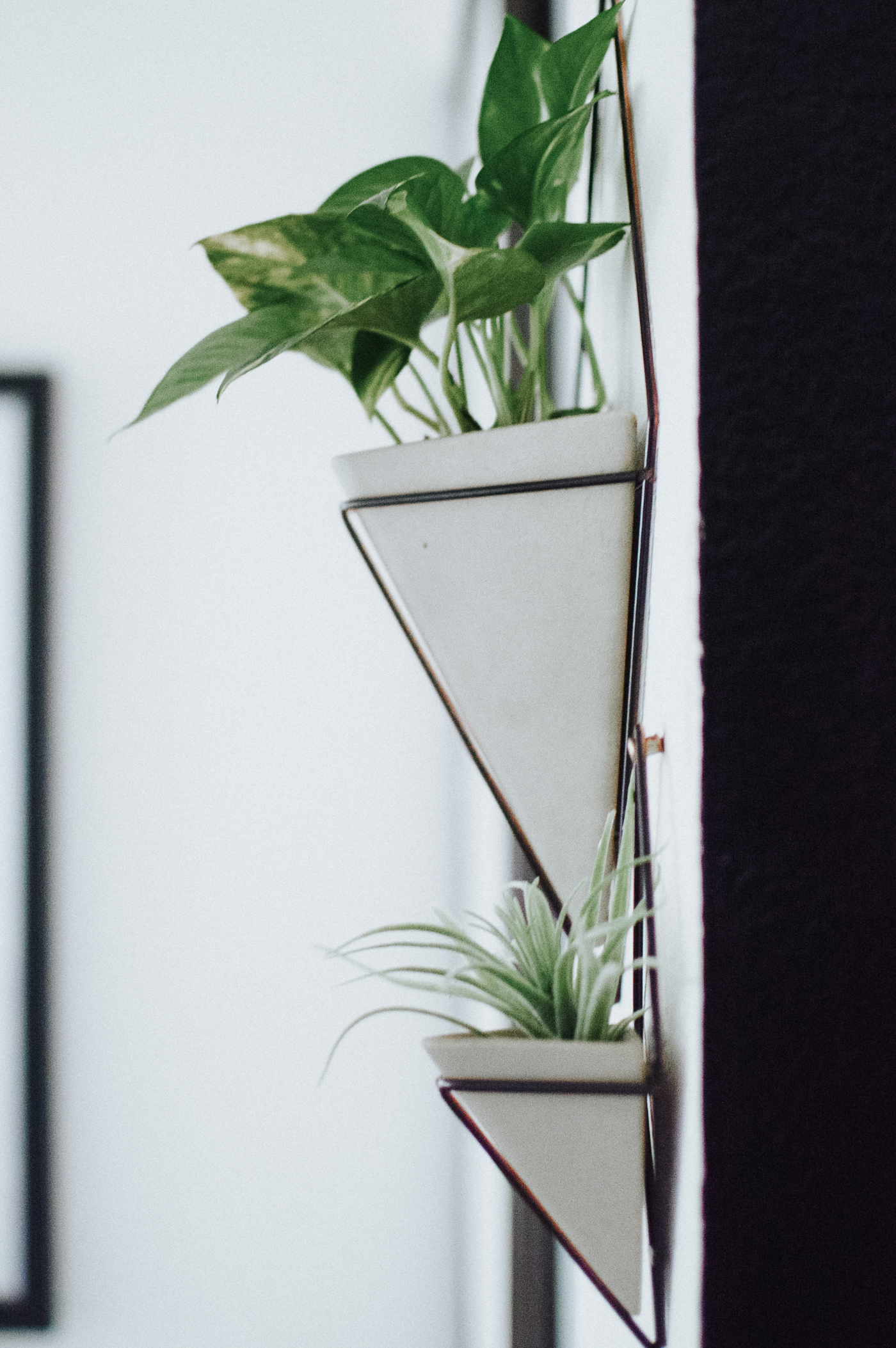 Office Redesign with HGTV HOME™ by Sherwin-Williams via. Birdie Shoots