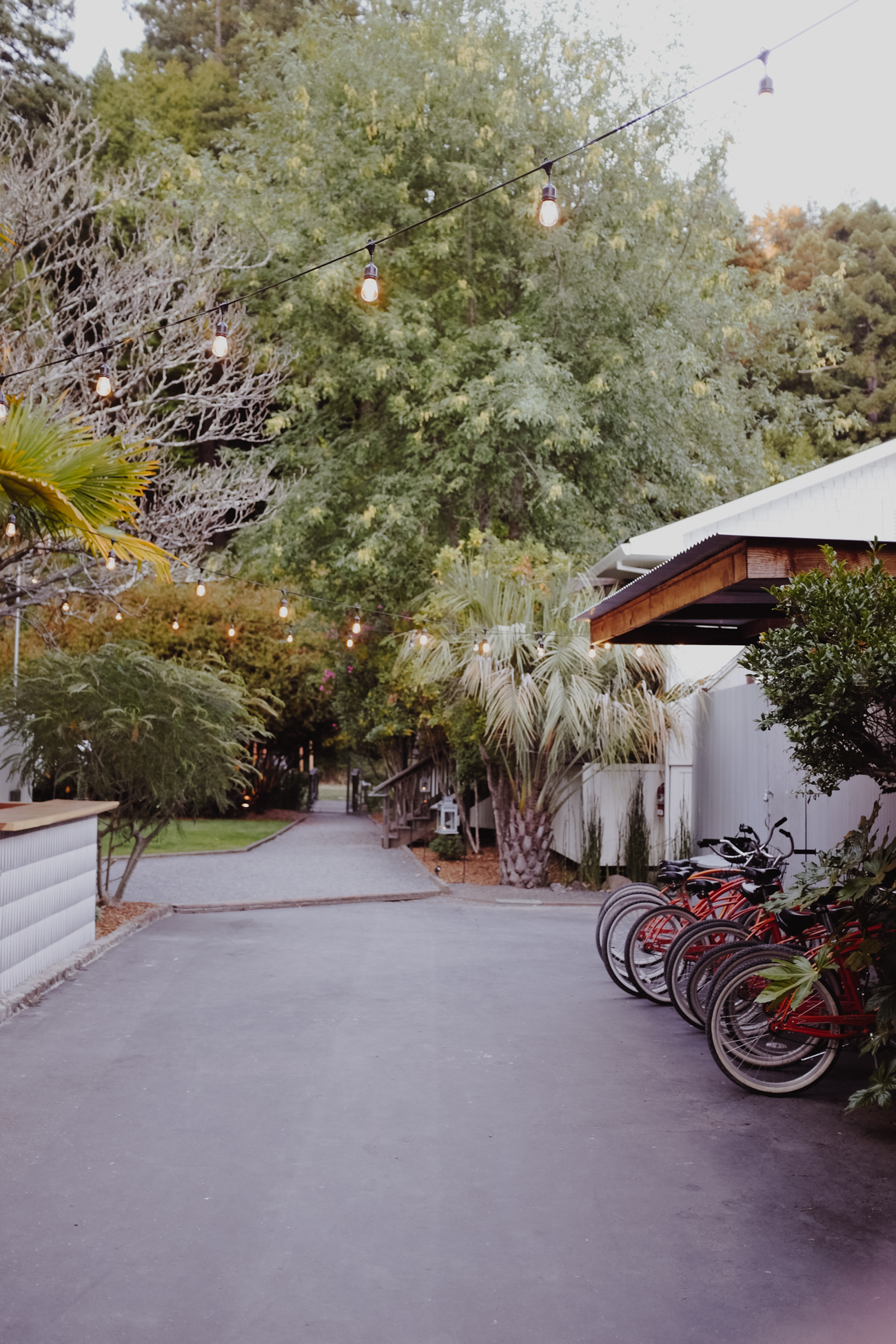 24 HRS IN GUERNEVILLE: WHERE TO EAT, DRINK, AND STAY | via. Birdie Shoots