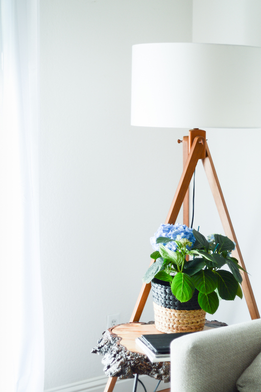 First Look: Simple Redesign Projects for your Living Space via. Birdie Shoots | www.birdieshoots.com
