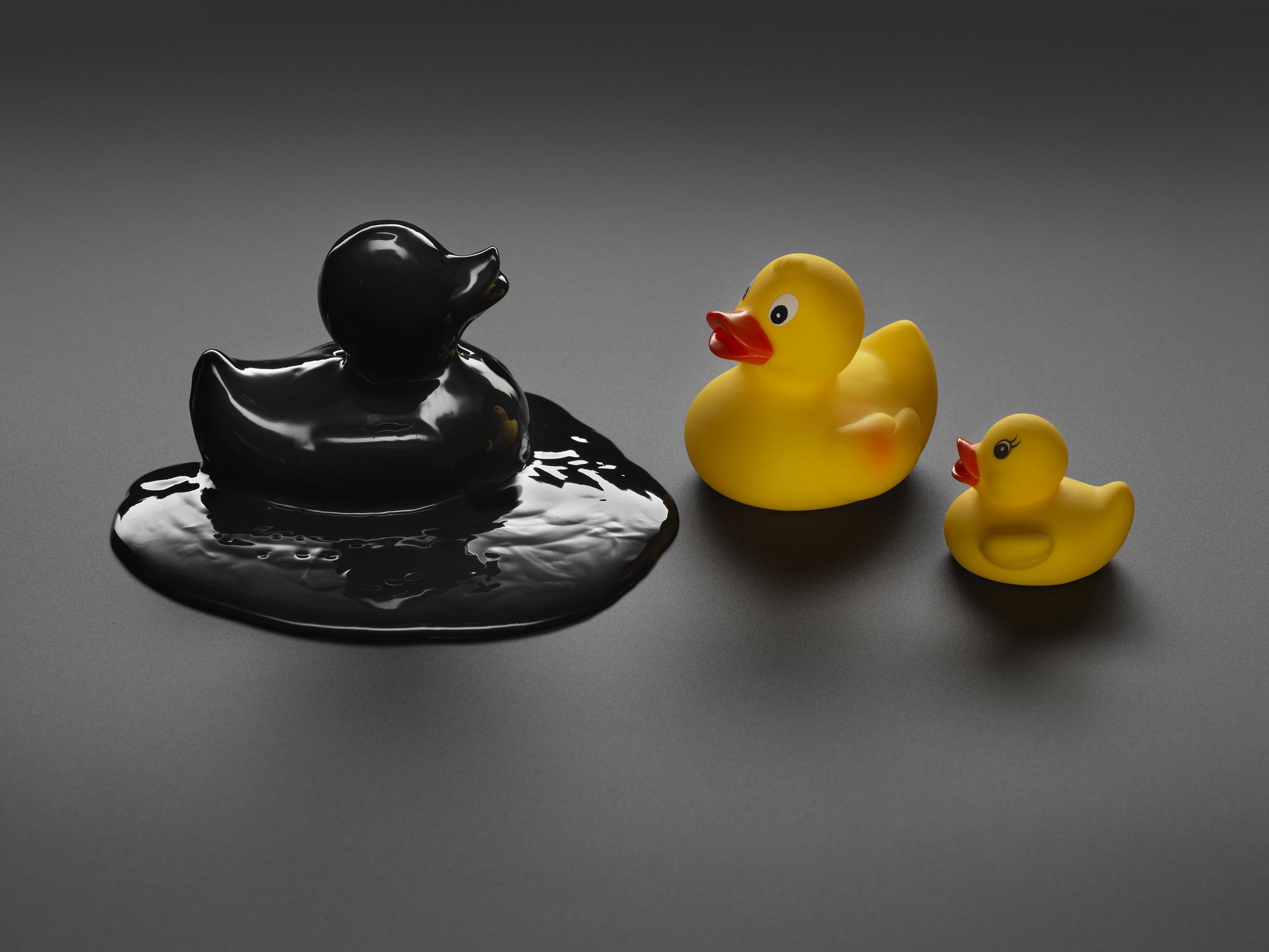 toxic duck.jpg